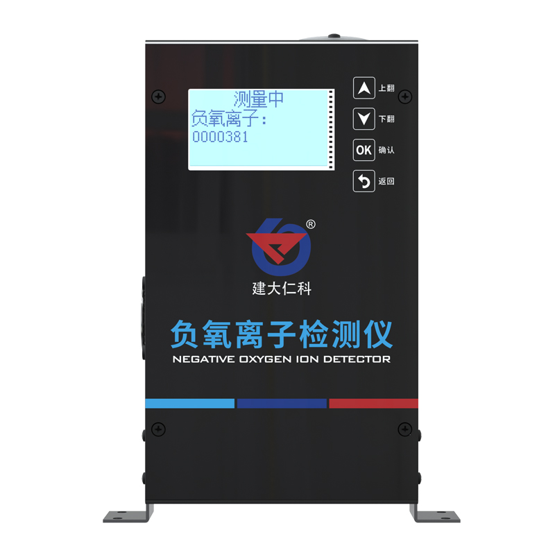 负氧离子检测仪 195